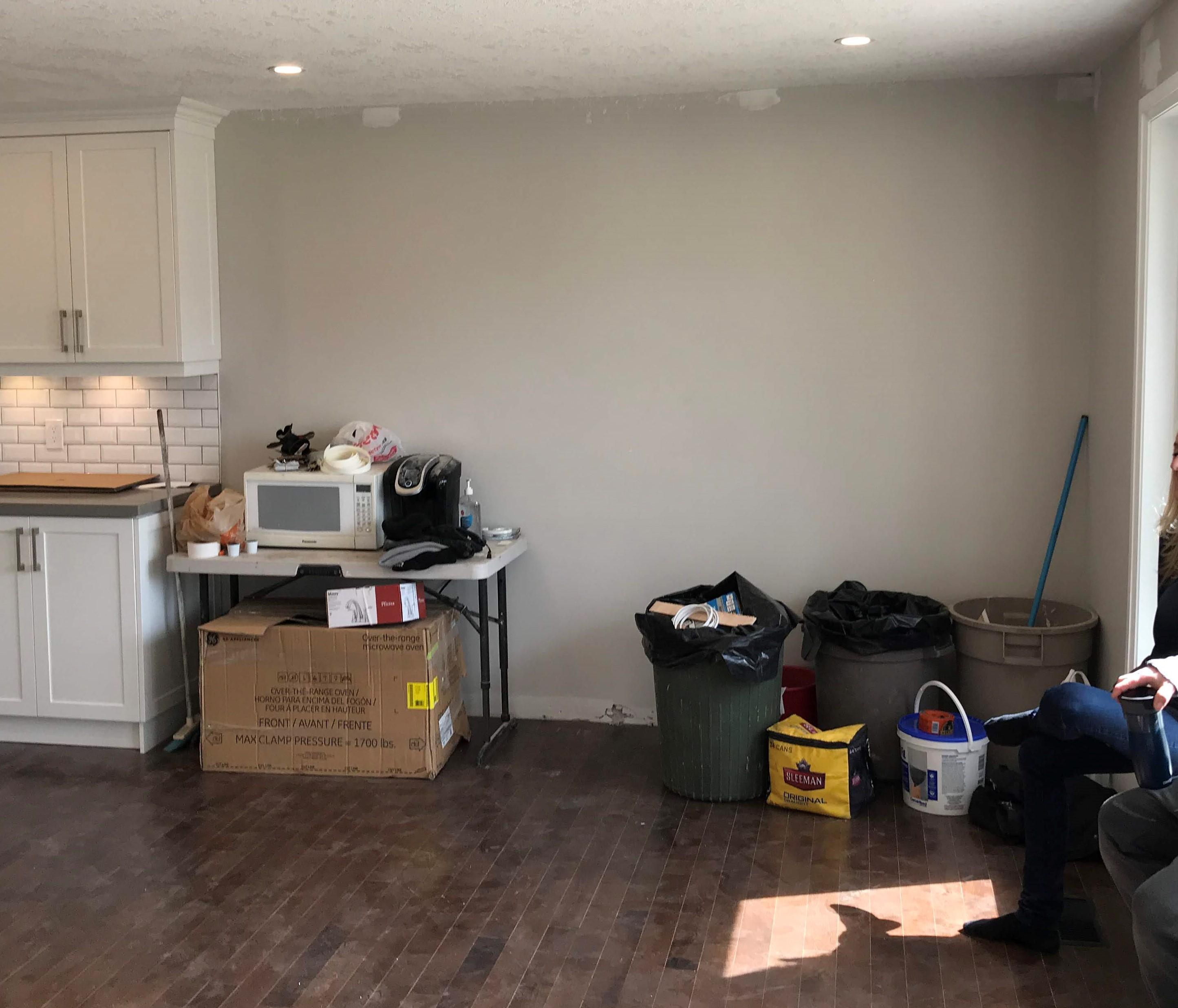 Carnation Living Room before